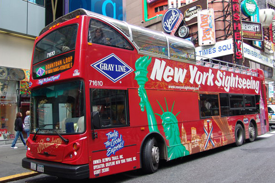 Loaded with information about several Gray Line Sightseeing and Nightclubbing tours available in New York City.