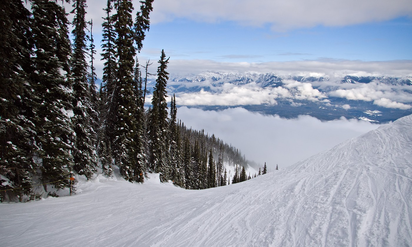 snow skiing essays The training slope is allocated for skiing and snowboarding lessons by our instructors and supervised snow activities only all recreational skiing  essays.